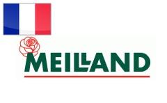 meilland_logo