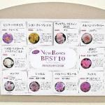 2017「国際バラとガーデニングショウ」詳細レポートVol.4  世界のニューローズBEST10!