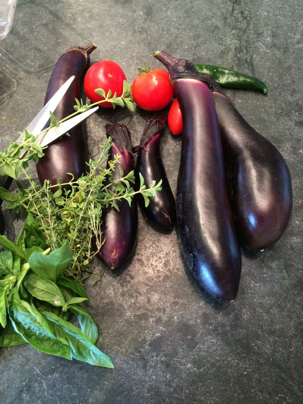 Eggplant from the garden