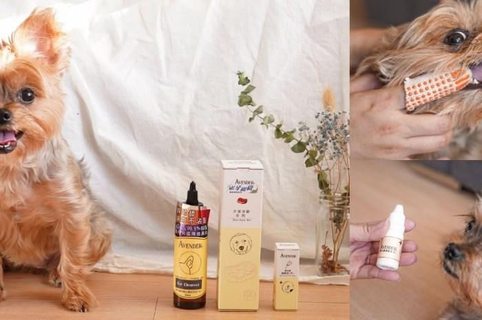 寵物清潔用品推薦!Avender阿凡達潔耳液、口腔牙膏、淚腺,全面守護毛孩的健康!