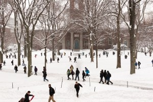 Harvard University Ivy College Essay