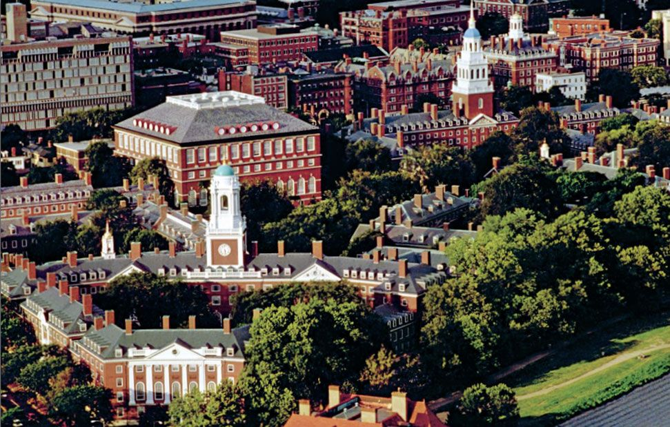 Harvard Ivy College Essay