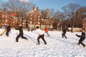 Harvard Yard_Ivy_League_College_Essay