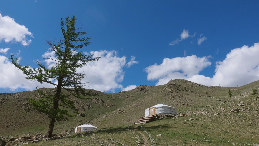 my best_ mongolia