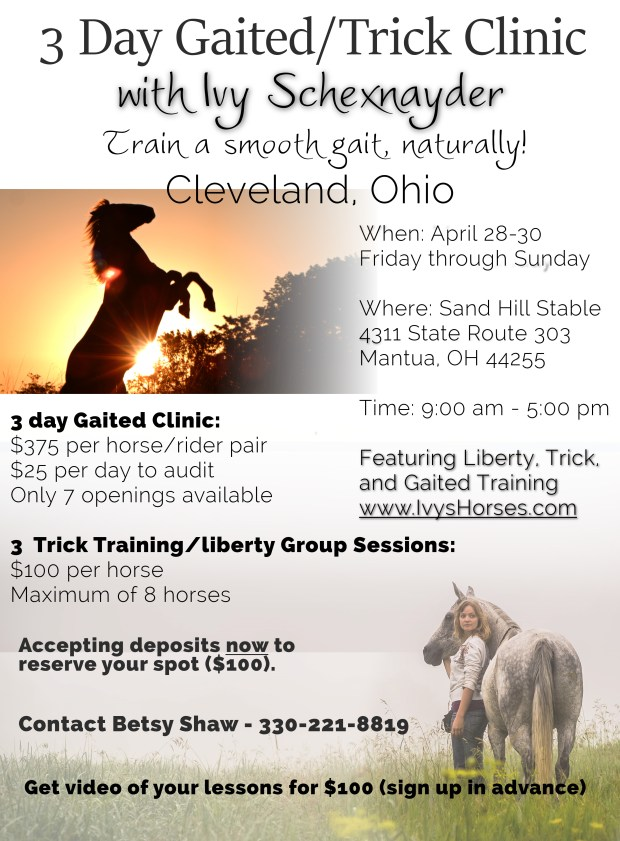 cleveland-gaited-trick-clinic