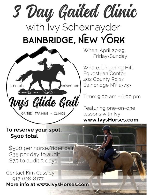 2018 NY clinic flyer 2
