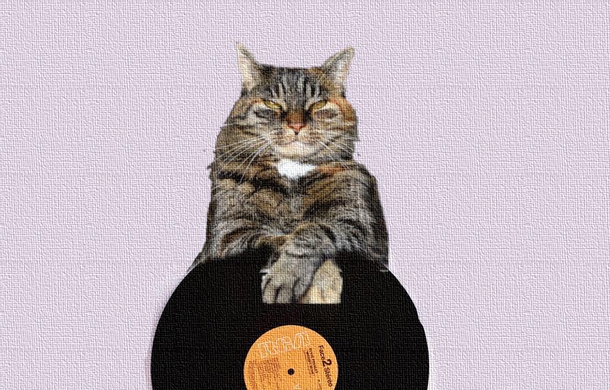 猫とレコード