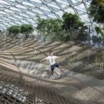 My Experience at Canopy Park (Jewel Changi Airport) Full Guide – Mindboggling Mazes, Height Defying Walking Nets & More
