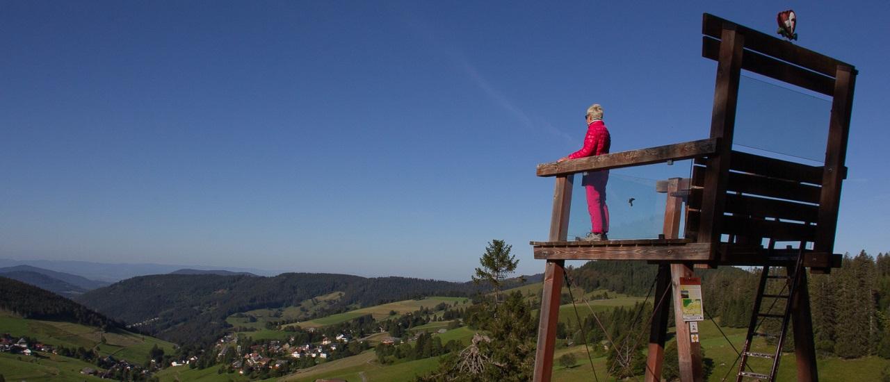Wohnmobiltour durch den Südschwarzwald