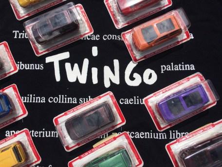 Guisval Twingo (6)
