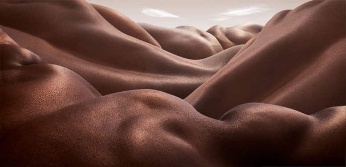 Desert of Backs