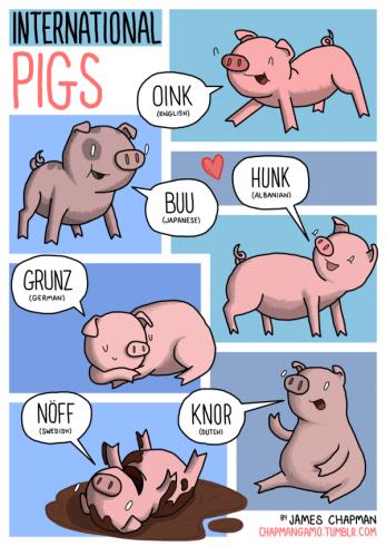 7-International-Pigs-by-James-Chapman-600x848