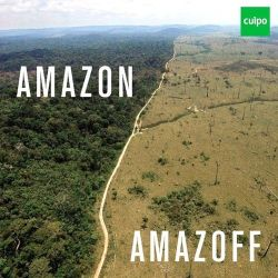 Cuipo: Save the rainforest