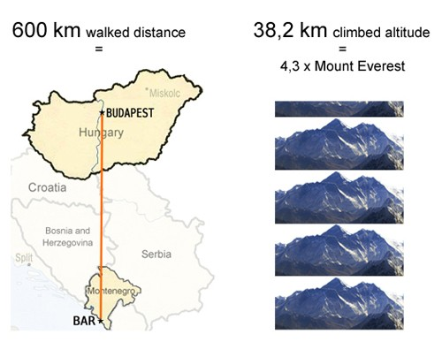 Project JH100 walked distance and total elevation summary stats
