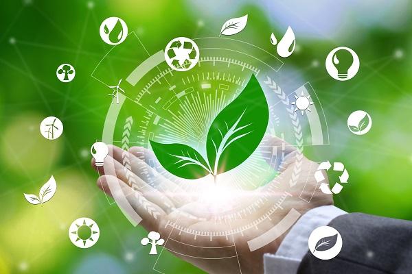 Sistema Créditos de Carbono