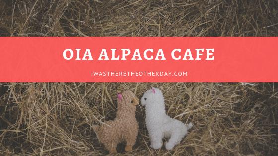 oia alpaca cafe