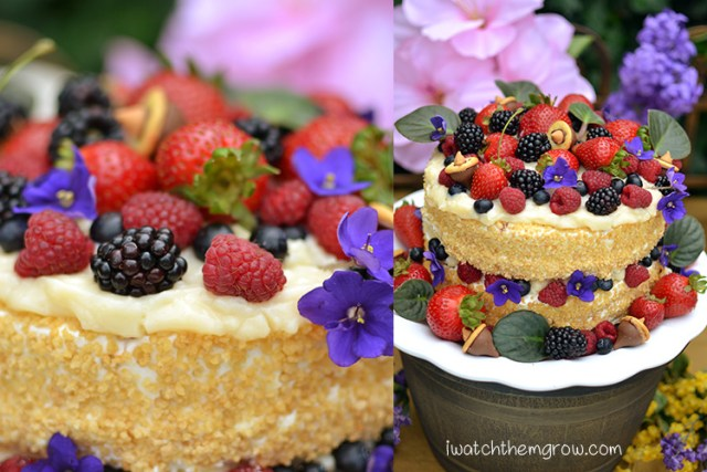 This scrumptious garden fairy party cake is loaded with fresh berries, flowers and chocolate acorns atop coconut pudding. Yum!