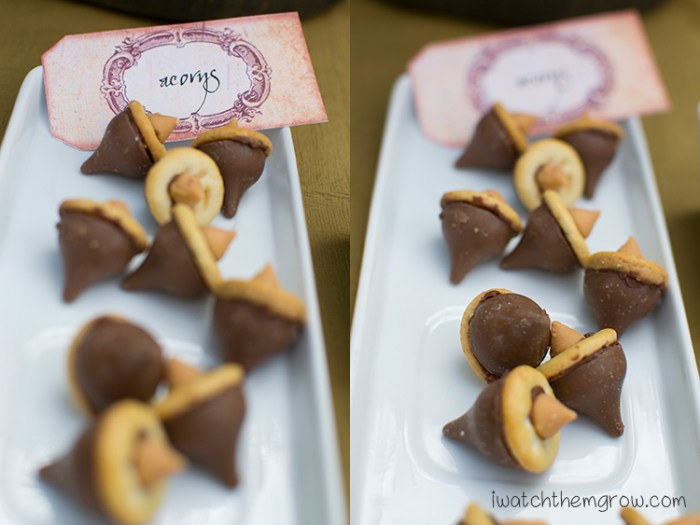 So cute chocolate acorns! For fairy party, fall, Halloween or Thanksgiving!