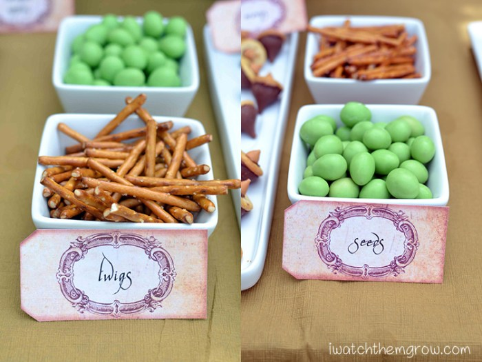 Garden fairy party food ideas - pretzel sticks for twigs and green candy for seeds