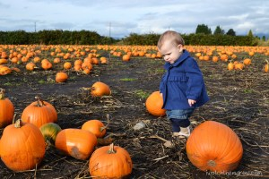Halloween photo ideas - pumpkin picking