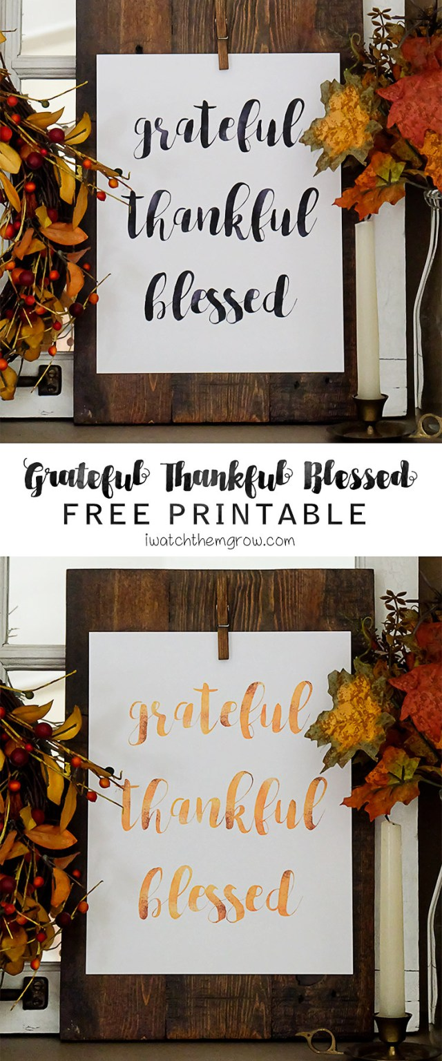 Use this grateful thankful blessed free printable to remind yourself to feel happy about all that is good in your life. Faux gold foil or black watercolor 8x10 printable, free from iwatchthemgrow.com