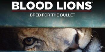 Blood Lions_2
