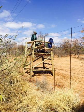 Limpopo Driven Hunt