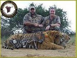 Tiger's Illegal Kill in SA