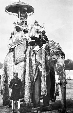 Elephant_Colonial