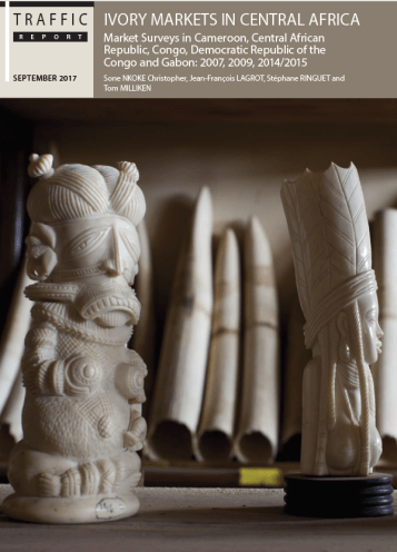 Ivory Markets in Central Africa