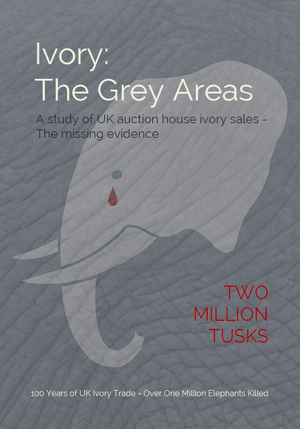 TMT Ivory The Grey Areas