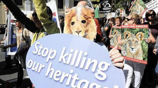 Canned - Stop killing our heritage
