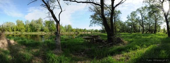 DSC_6796 Panorama