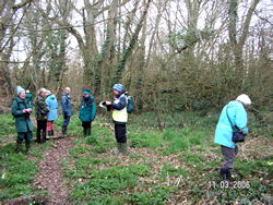 Atkies Copse, Ningwood Botany Meeting © GT