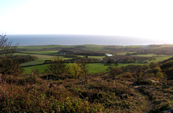 view from Mottistone Down © GT