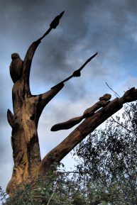 Paul Sivell's Tree sculpture (photo Dave Trevan)