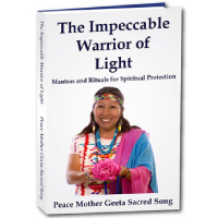 Impeccable-Warrior-of-Light-Book raise your vibration