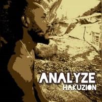 Hakuzion - Analyze