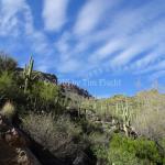 7 Falls Trail, Tucson, AZ