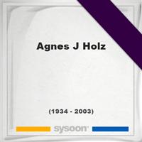 Agnes J Holz †68 (1934 - 2003) Online pomník a hrob [sk]