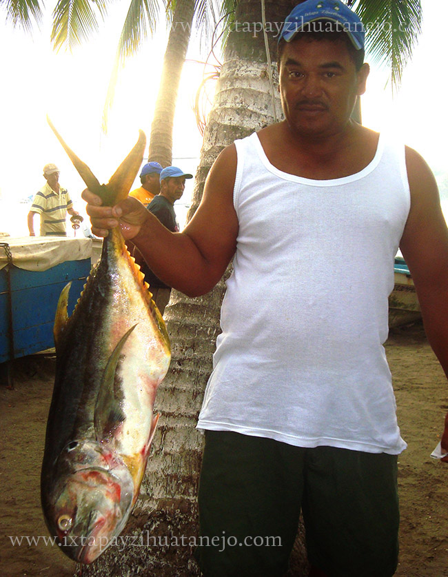 pescador-pesca-ixtapa-zihuatanejo