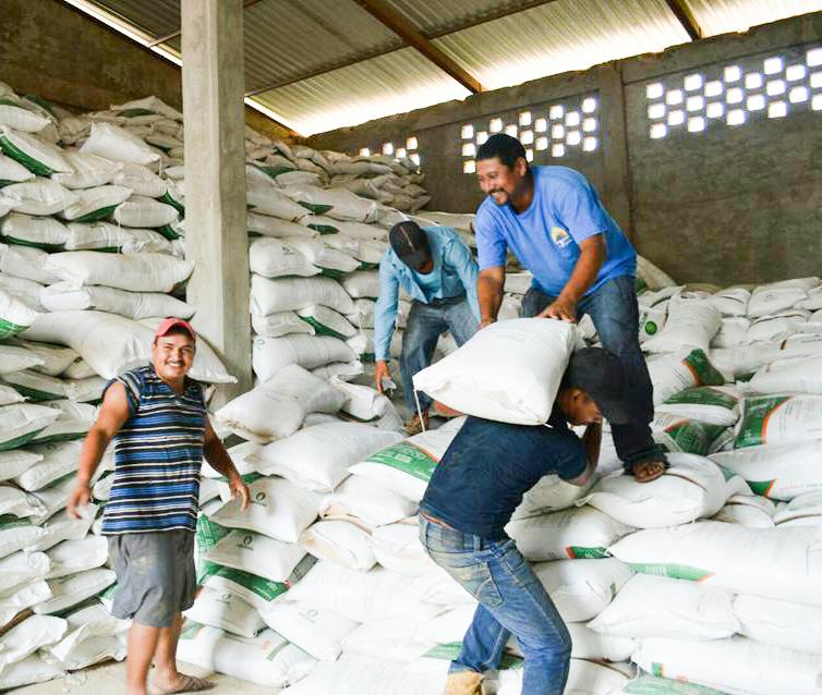 fertilizante-vallesitos