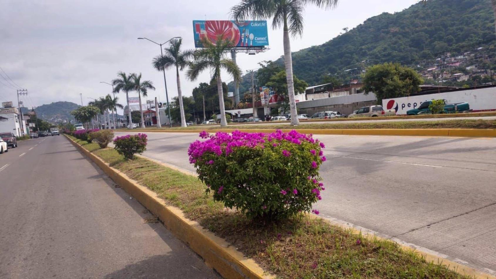 areas-verdes-zihuatanejo-.jpg