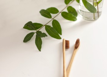 Two brown bio-degradable, compostable bamboo toothbrushes on white background. Green plant decor in background.
