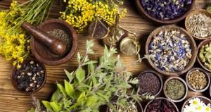 Impact Of Herbal Medicine On Modern Treatments