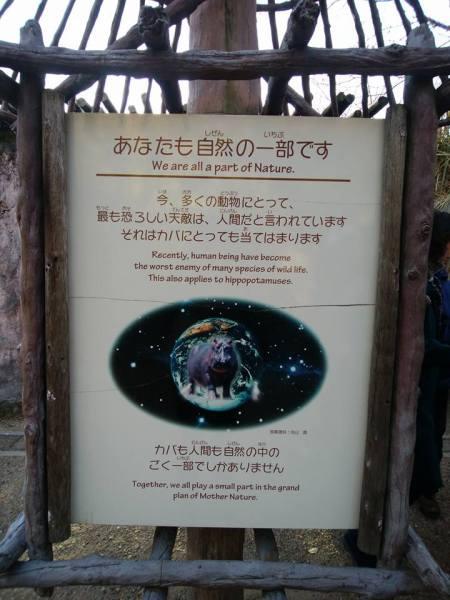 動物園ヨガ