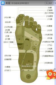 中国の足つぼの画像