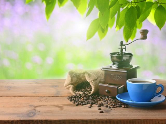 11 - Coffee Varieties