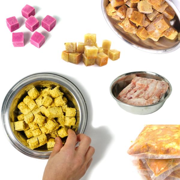 Başlangıç Menüsü Çiğ Beslenmeye Geçiş İçin İhtiyacınız Olan Her Şey Kedi ve Köpek Sağlıklı Beslenme