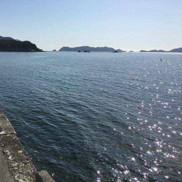 真穴みかん,海